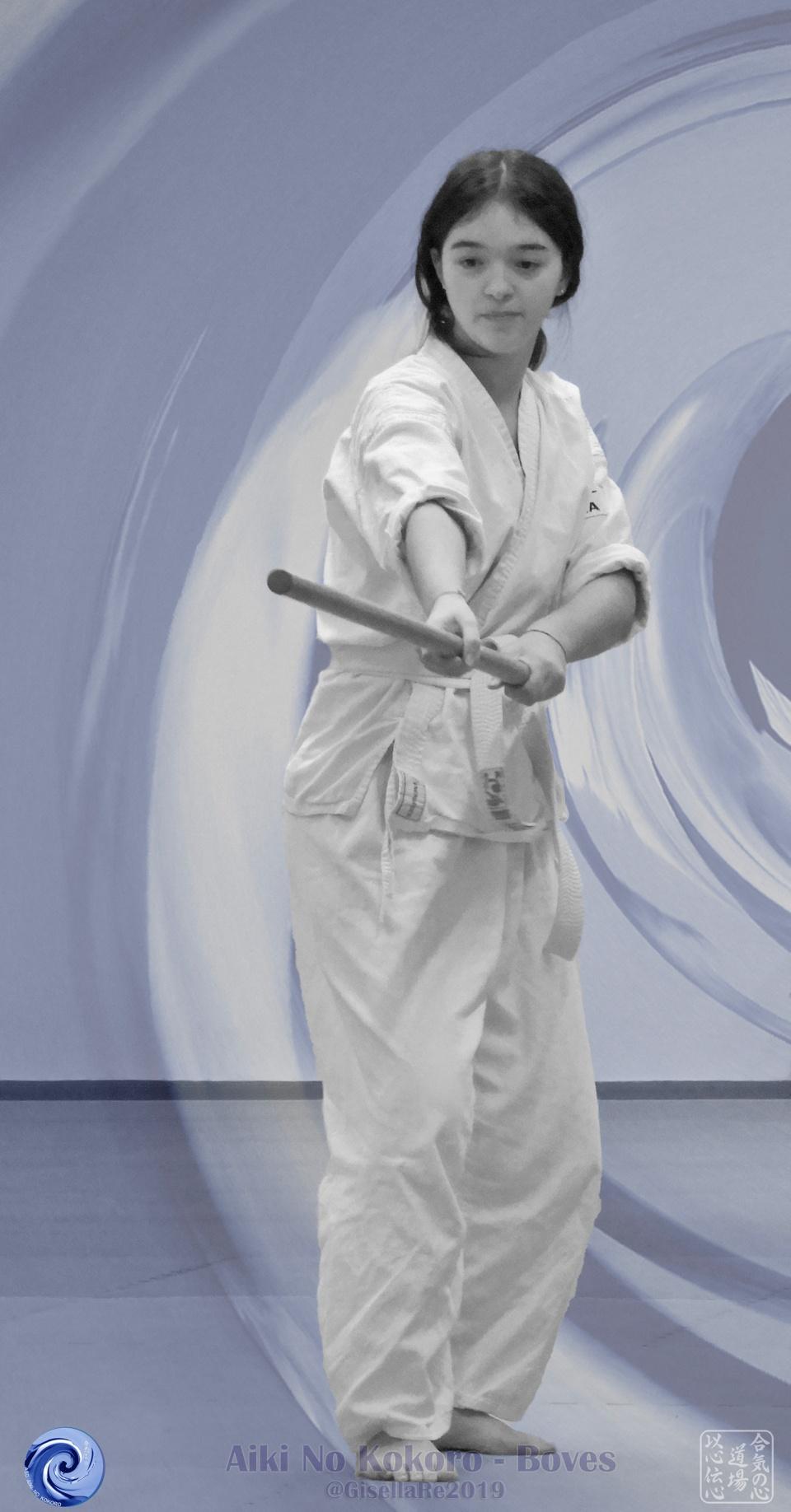 Kimochi No Keiko - Il seme dell'Aikido