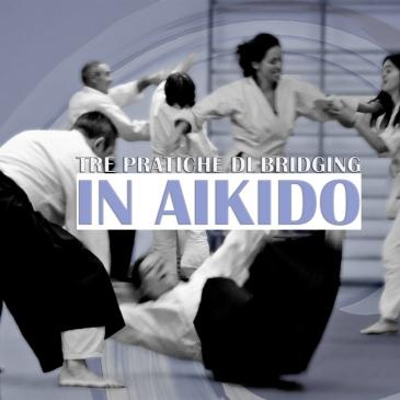 Pratiche di bridging in Aikido, Aikido in daily life